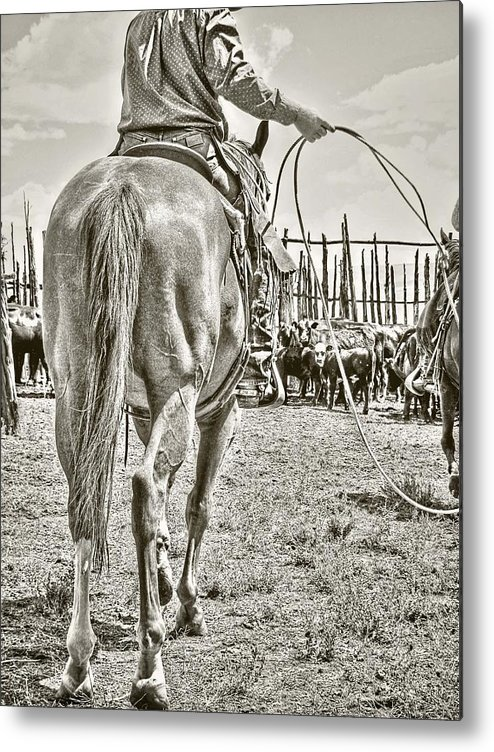 Cowboy Metal Print featuring the photograph Here We Go Again by Megan Chambers