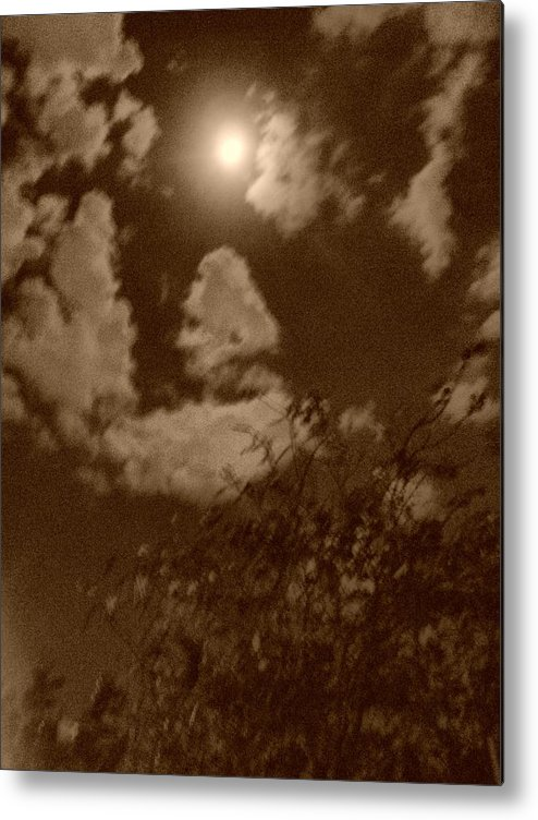 Nature Metal Print featuring the photograph Madrugada by Beto Machado