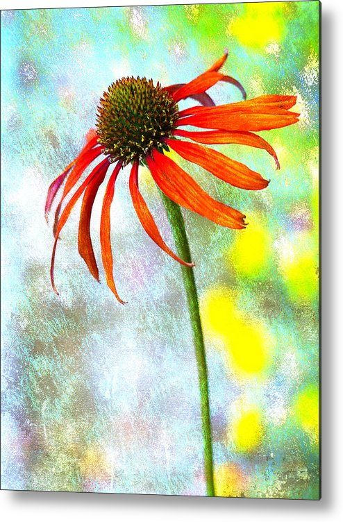 Flower Metal Print featuring the photograph Orange Coneflower On Green And Yellow by Carol Leigh