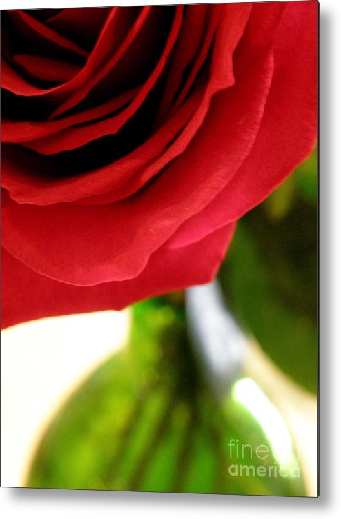 Rose Metal Print featuring the photograph Red Rose In Glass Vase by Lainie Wrightson