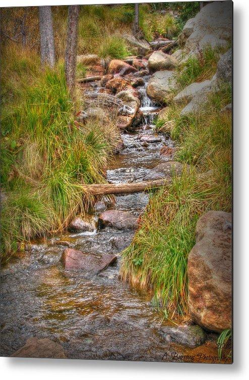 Rio En Medio Creek Metal Print featuring the photograph Rio En Medio Headwaters Autumn by Aaron Burrows