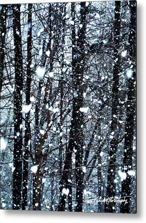 Landscape Metal Print featuring the photograph Snoball Flakes by Ruth Bodycott