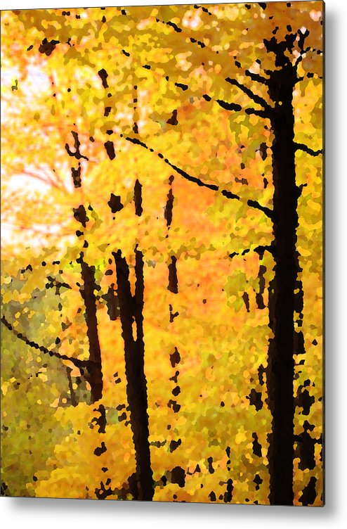 Autumn Metal Print featuring the photograph Too Much by Ian MacDonald