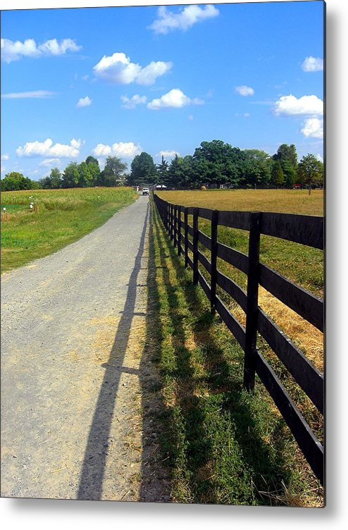Field Metal Print featuring the photograph Long Fence For A Long Road by Caroline Urbania Naeem