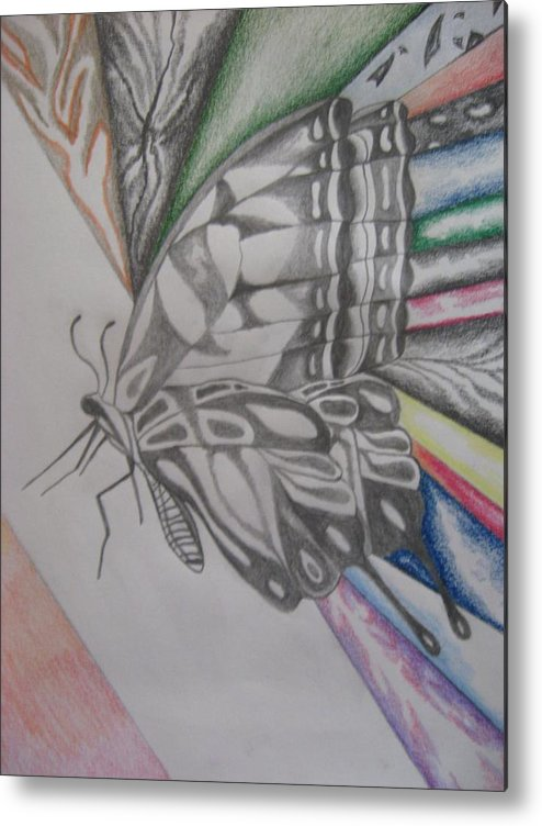 Butterfly Metal Print featuring the drawing Butterfly Light by Theodora Dimitrijevic