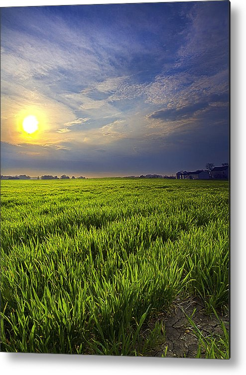 Horizons Metal Print featuring the photograph Dew by Phil Koch