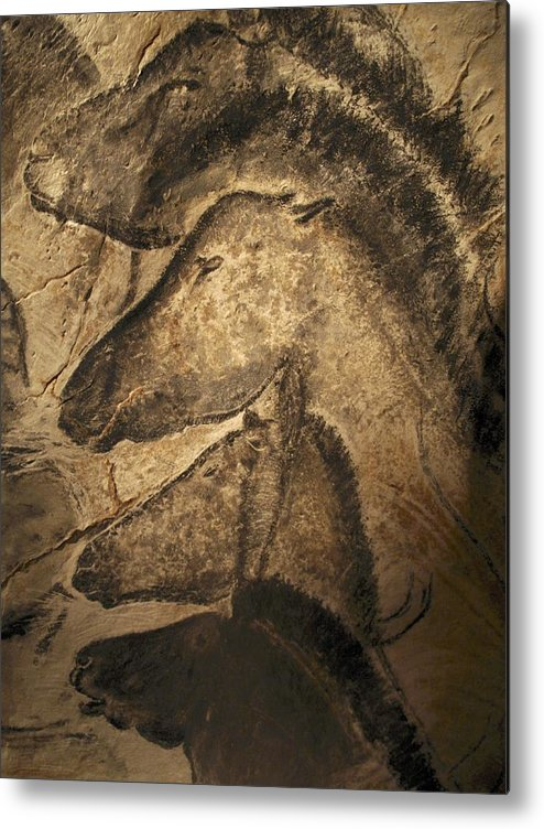 Animal Metal Print featuring the photograph Stone-age Cave Paintings, Chauvet, France by Javier Truebamsf