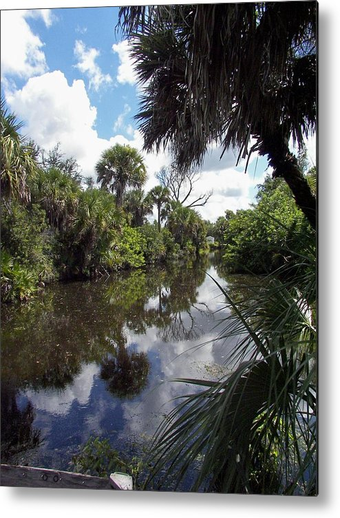 Florida Metal Print featuring the photograph a little bit of Florida by Charles Peck