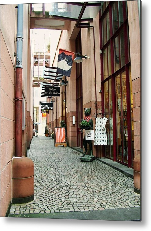 Street Metal Print featuring the photograph Alley Cat by Martina Fagan