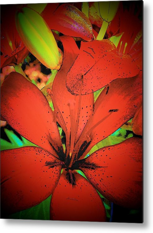Asian Metal Print featuring the photograph Asian Lily by Vijay Sharon Govender