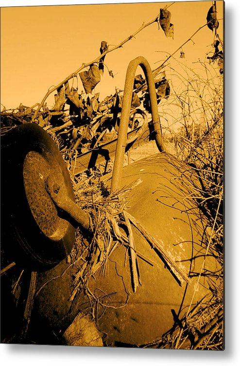Photograhy Metal Print featuring the photograph Barrow by Jeff DOttavio