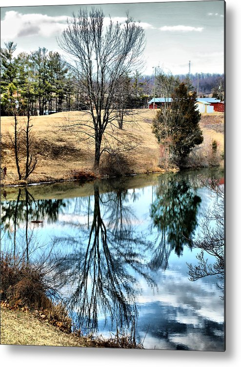 Pond Metal Print featuring the photograph Beautiful Reflection 2 by Kathy Jennings