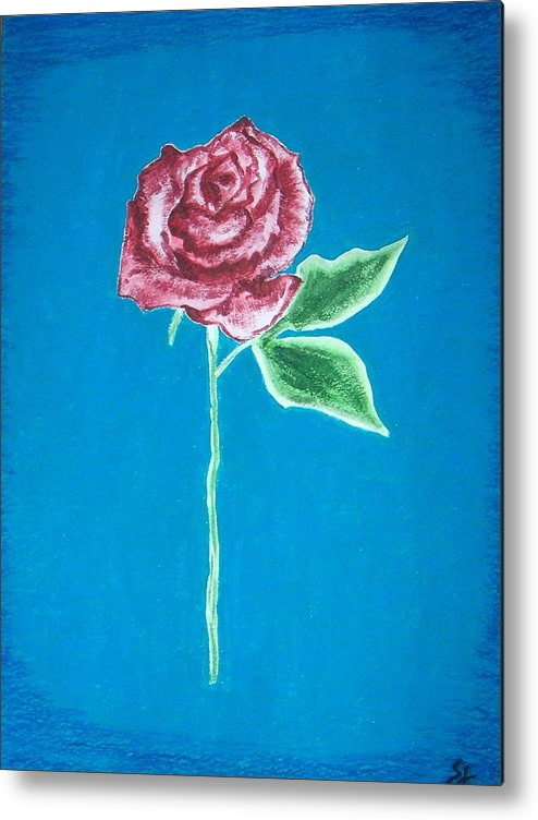 Rose Metal Print featuring the painting Beautiful Rose On Blue Background by Sanchia Fernandes