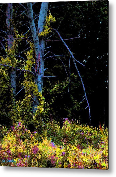 Birch Trees In Summer Metal Print featuring the photograph Birch And Vines by Joanne Smoley
