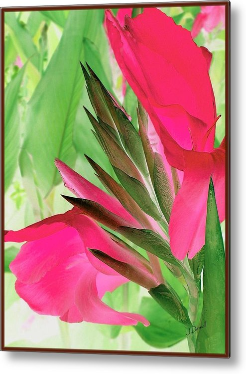 Flower Metal Print featuring the digital art Bird Of Paradise 2 by Jim Darnall