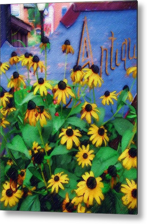 Flowers Metal Print featuring the photograph Black-eyed Susans At The Bag Factory by Sandy MacGowan