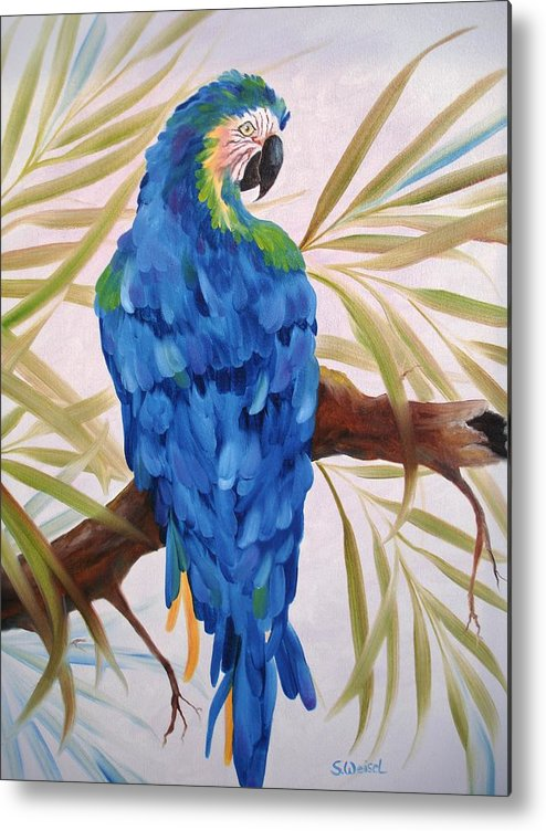 Wild Animal Exotic Bird Blue Macaw Tropical Metal Print featuring the painting Blue Macaw by Sherry Winkler