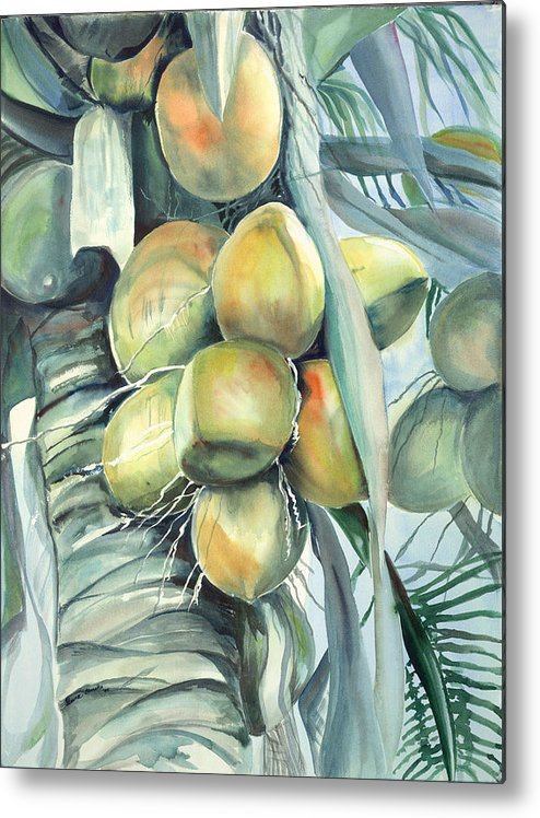 Coconut Palm Metal Print featuring the painting Coconuts by Ileana Carreno