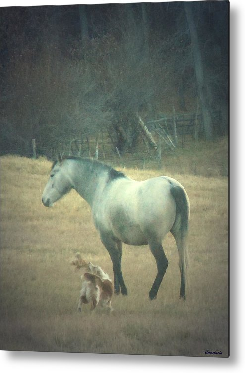 Metal Print featuring the photograph Come Play With Me by Anastasia Savage Ealy