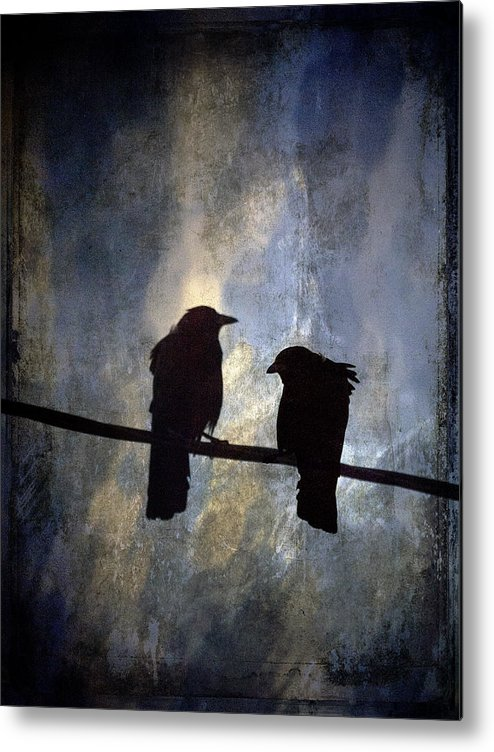 Crow Metal Print featuring the photograph Crows And Sky by Carol Leigh
