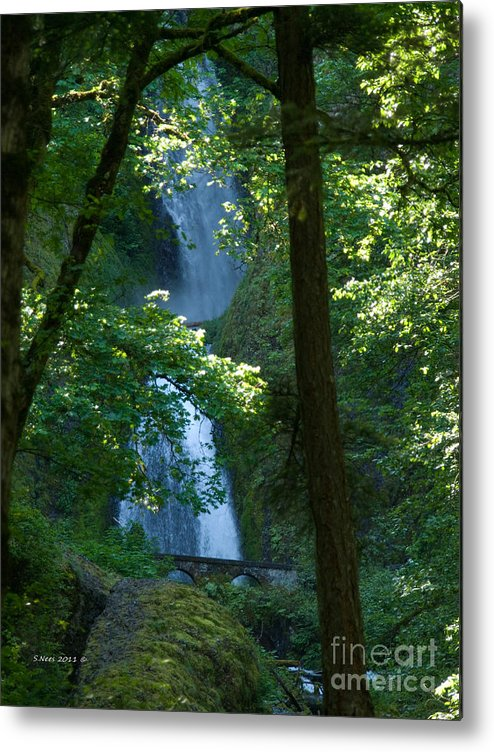 Waterfall Metal Print featuring the photograph Curves by Shari Nees