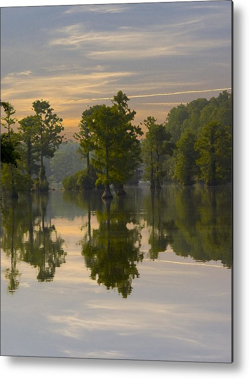 Greenfield Park And Gardens Metal Print featuring the photograph Cypress In Lake Reflection by Paul Boroznoff