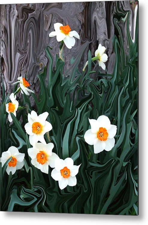 Flower Metal Print featuring the photograph Daffodills by Jim Darnall