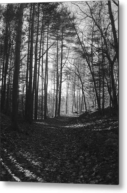 Landscape Metal Print featuring the photograph Days End by Michelle Sarafian