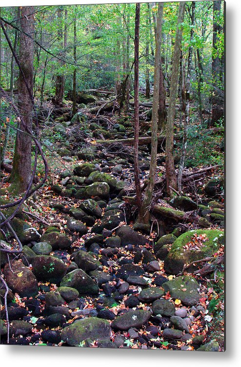 River Metal Print featuring the photograph Dry River Bed- Autumn by Nancy Mueller