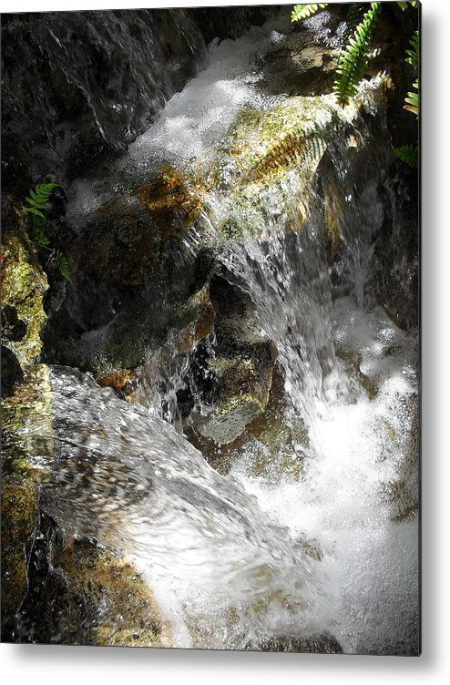 Nature Metal Print featuring the photograph Duck Illusion by John OBrien