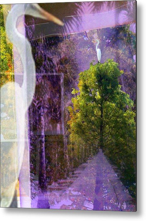 Egret Metal Print featuring the digital art Egret In Passing by Deborah Hildinger
