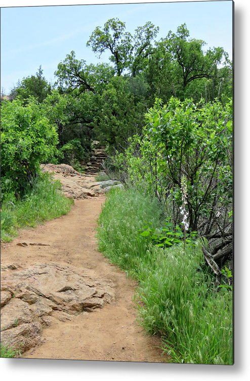 Elk Mountain Trail Metal Print featuring the photograph Elk Mountain Trail by Charrie Shockey