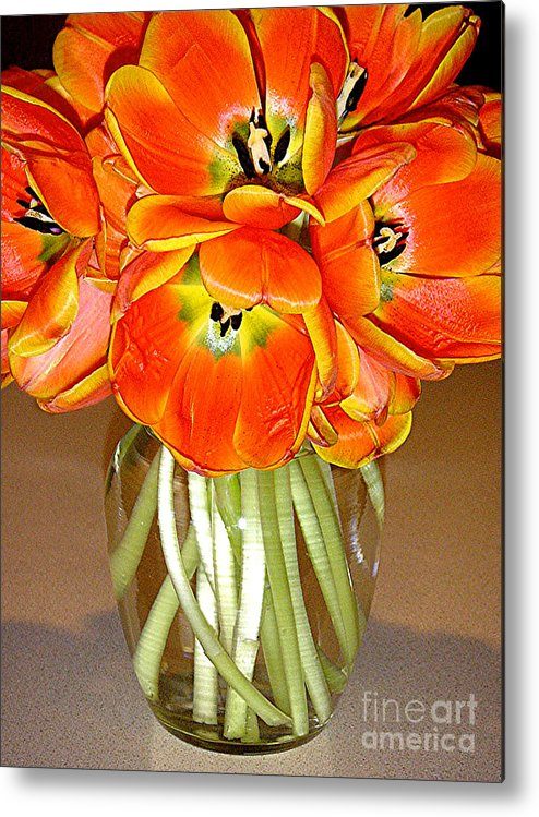 Nature Metal Print featuring the photograph Flaming Tulips In A Vase by Lucyna A M Green