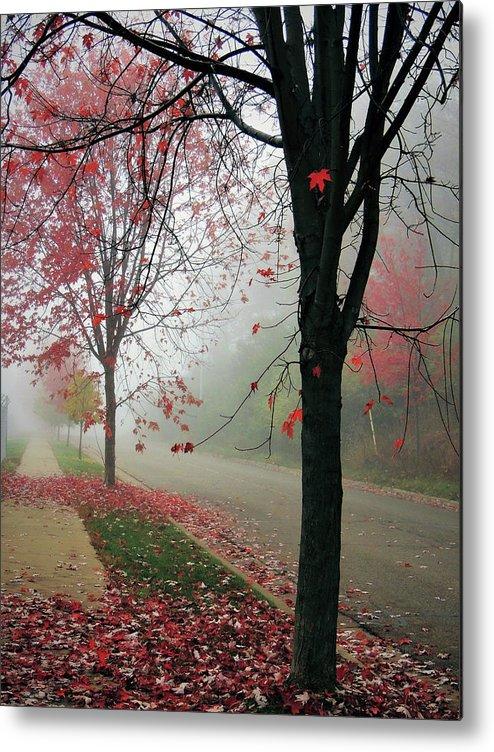 Autumn Metal Print featuring the photograph Fog On A November Morning by Karen Majkrzak