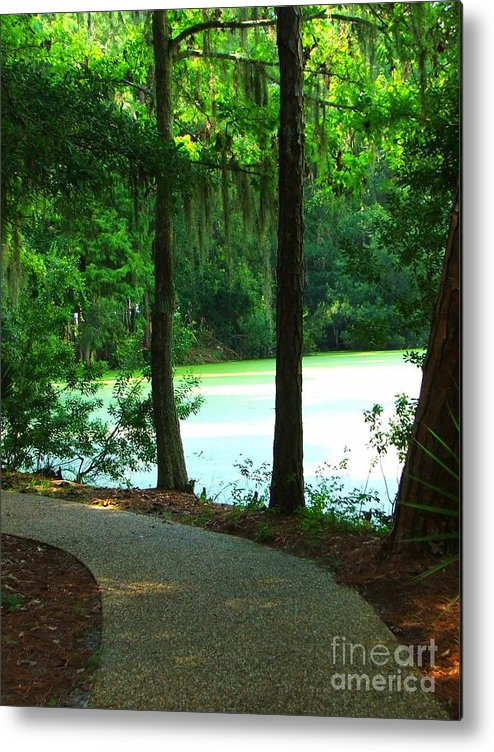 Path Metal Print featuring the photograph Follow The Right Path by Judy Waller