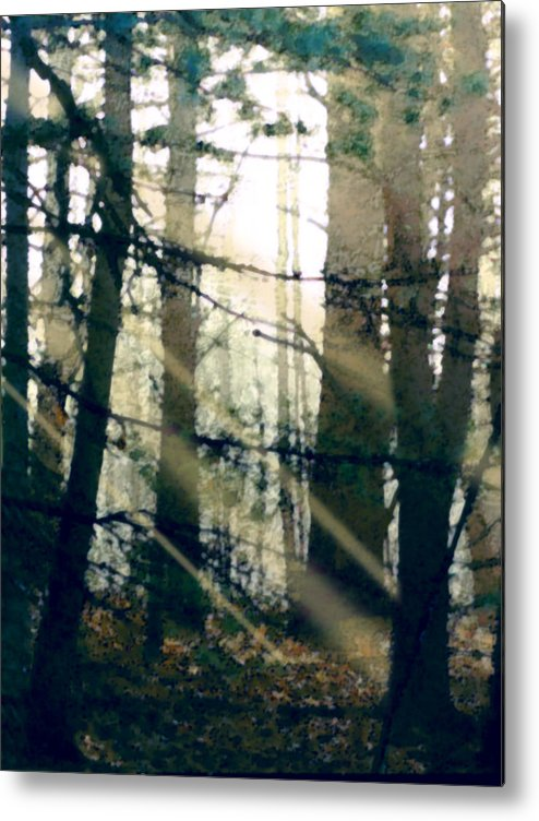 Forest Metal Print featuring the painting Forest Sunrise by Paul Sachtleben