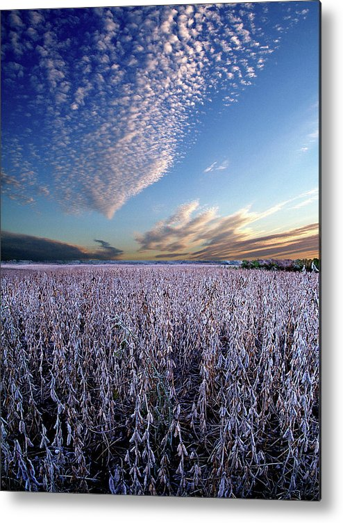 Horizons Metal Print featuring the photograph Frozen Fields by Phil Koch