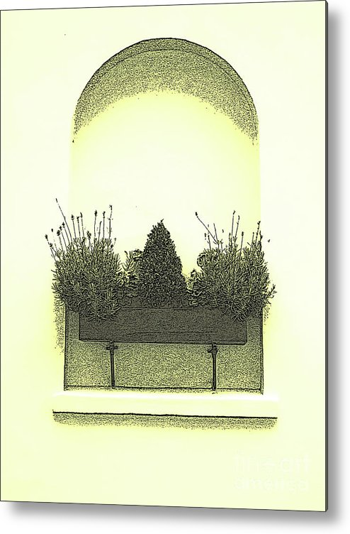 Garden Metal Print featuring the photograph Garden Wall Box by Karen Lewis