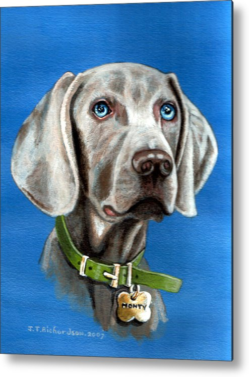 Dog Weimeraner Blue Eyes And Blue B/grd Metal Print featuring the painting Grey Ghost by James Richardson