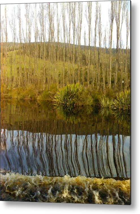 River Reflections Trees Poplars Landscape Metal Print featuring the photograph Huon Poplars by Bethwyn Mills