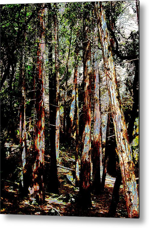 Abstract Metal Print featuring the painting In The Trees by Tim Tanis