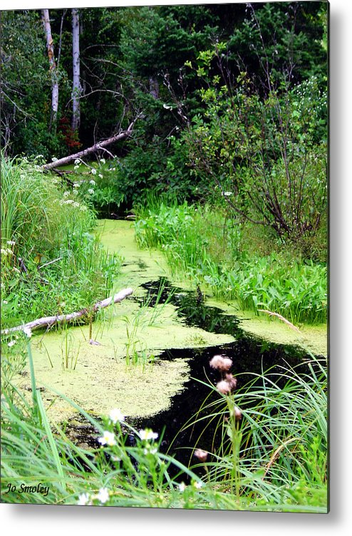 Pine Falls Manitoba Creek Water Metal Print featuring the photograph Late Summer At The Creek by Joanne Smoley