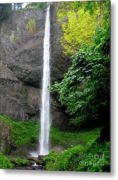 Waterfall Metal Print featuring the photograph Latourelle Falls by PJ Cloud