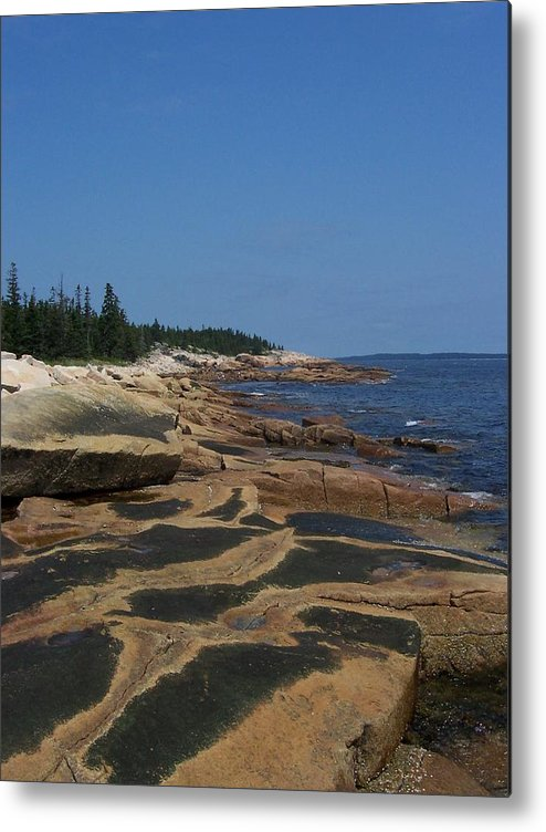 Maine Metal Print featuring the photograph Maine Coast by Lisa Kane