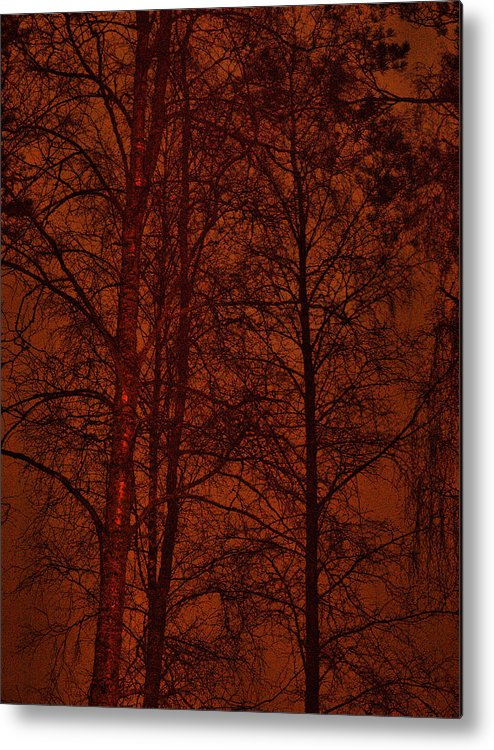 Lehtokukka Metal Print featuring the photograph Moonshine 11 Red Sky by Jouko Lehto