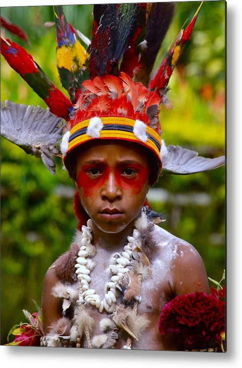 Avi Orchid Garden Metal Print featuring the photograph Mount Hagen Papua New Guinea Aog 19 by Per Lidvall