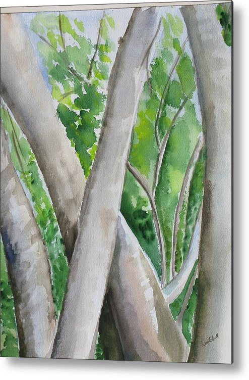 Landscape Metal Print featuring the painting Oak Creek Trees by Kathy Mitchell