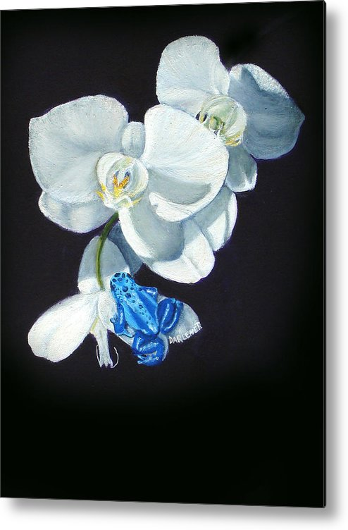 Blue Morph Frog Metal Print featuring the painting Orchid Treat by Darlene Green