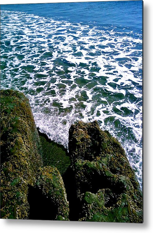 Photograhy Metal Print featuring the photograph Point Reyes Pt. 2 by Jeff DOttavio