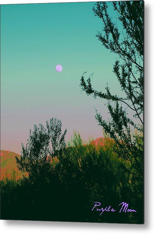 Moon Metal Print featuring the photograph Purple Moon by Regina Arnold